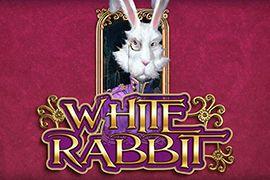 Játékmenet és alapinformációk White Rabbit